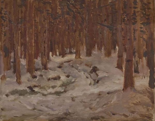 Antonín Slavíček – Les u Svratky