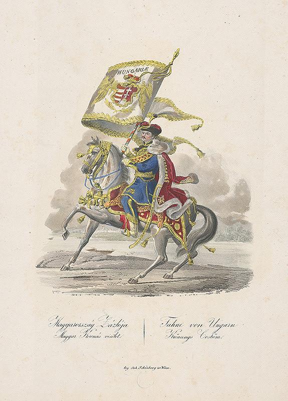 Stredoeurópsky grafik z 19. storočia - Vlajkonosič uhorskej zástavy pri korunovácii Ferdinanda V.
