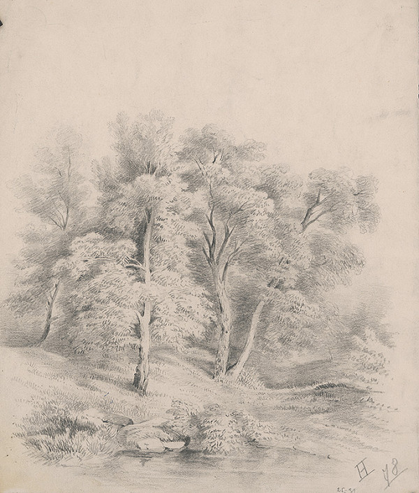 Stredoeurópsky grafik z 19. storočia - Krajinka I.