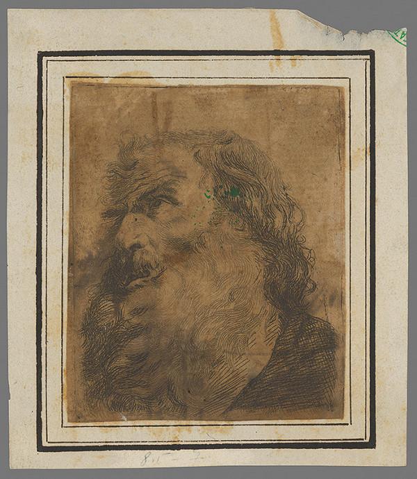 Stredoeurópsky grafik zo 17. storočia - Hlava starca