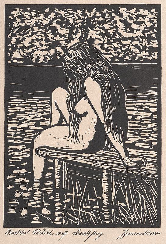 Johannes Brauer - Pri vode