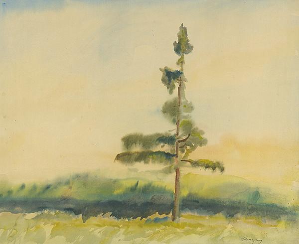 Zolo Palugyay – Osamelý strom