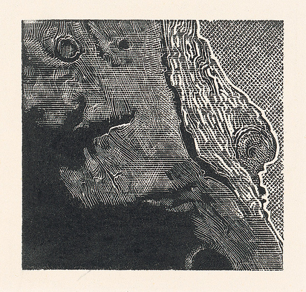 František Hübel – Štruktúra