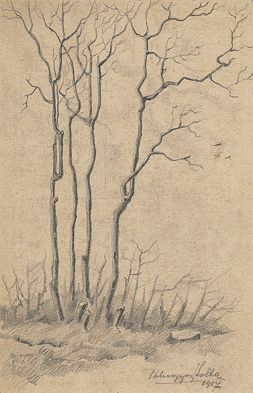 Zolo Palugyay - Štúdia stromov