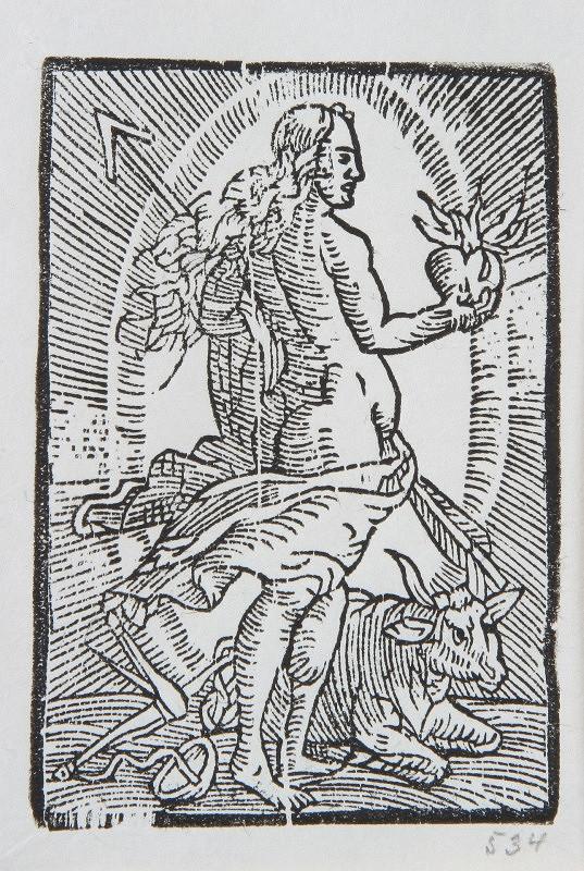 Neznámy autor – Venuša
