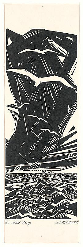 Rudolf Altrichter – Ústie Nevy