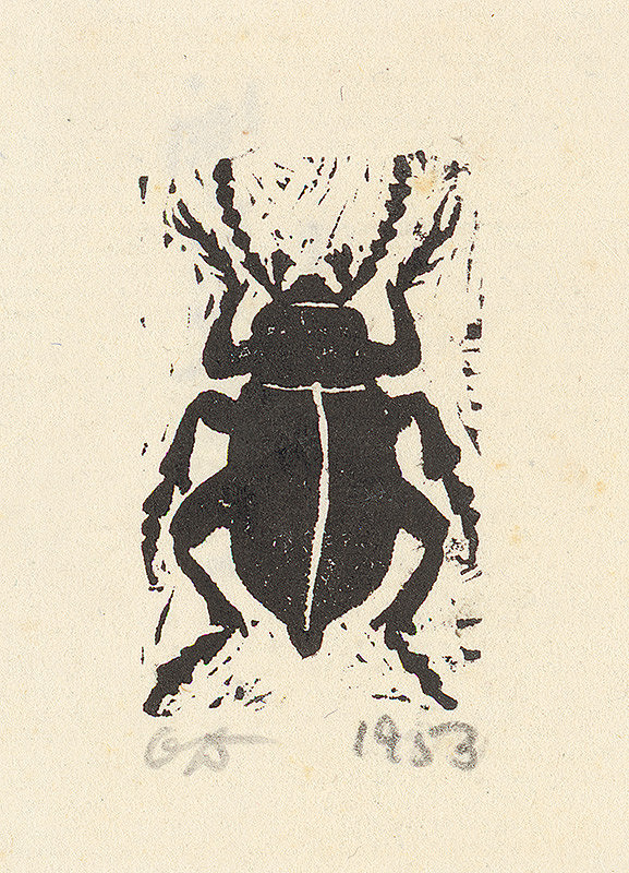 Orest Dubay – Chrobák