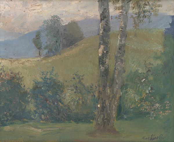 Maximilián Kurth – Krajinka