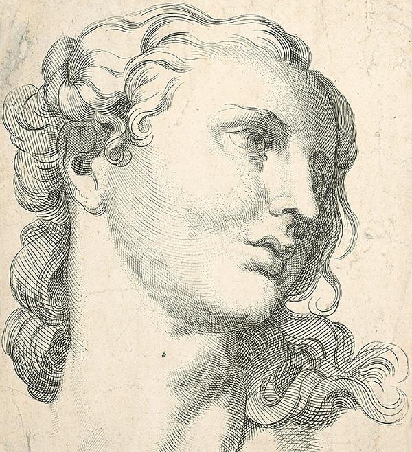 Stredoeurópsky autor z 19. storočia - Hlava