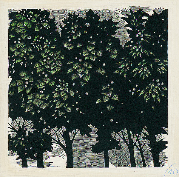 Albín Brunovský – Stromy
