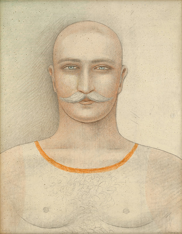 Jan Zrzavý - Podobizeň muža