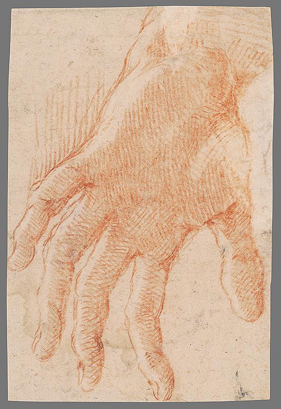 Stredoeurópsky majster z 18. storočia – Štúdia ľavej ruky