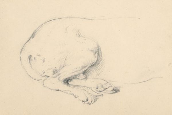 Friedrich Carl von Scheidlin – Štúdia sediaceho psa - detail