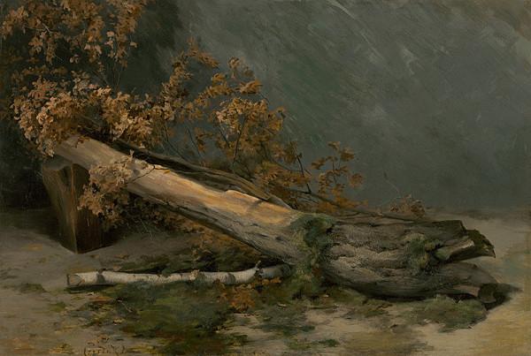 Ľudovít Čordák - Štúdia suchého stromu