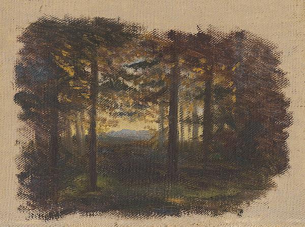 Jan Novopacký - Pred zotmením v lese