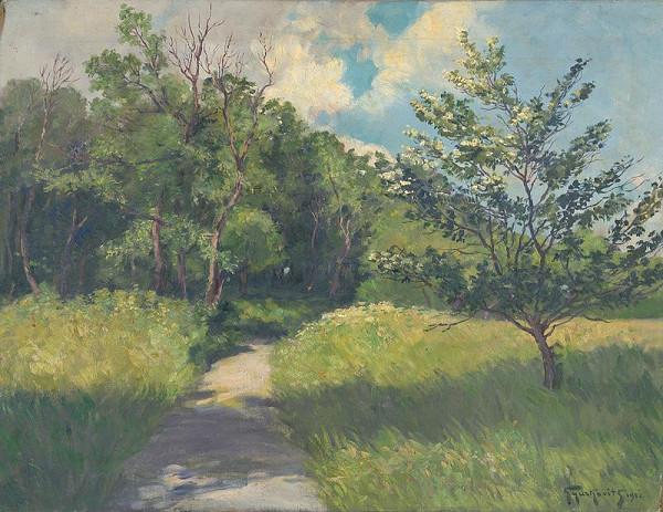 František Gyurkovits - Krajina v slnečnom svetle
