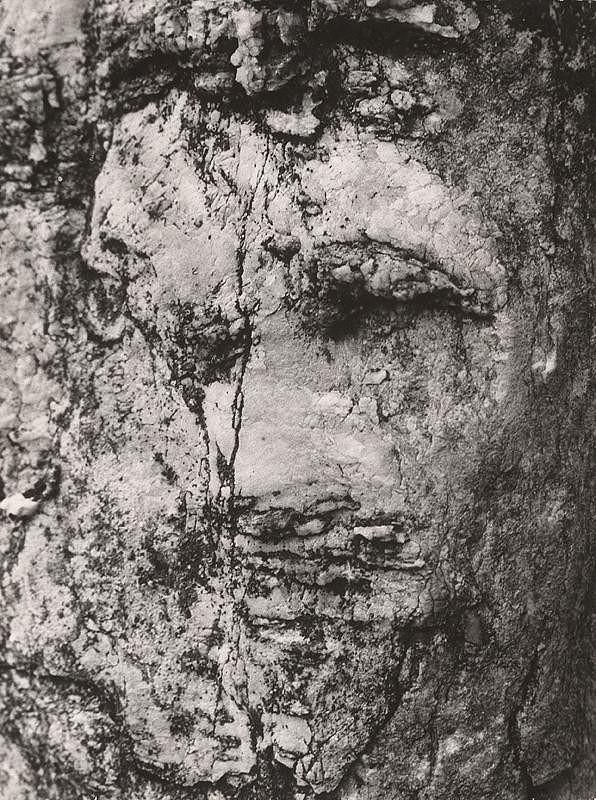 Martin Martinček – Biblická tvár