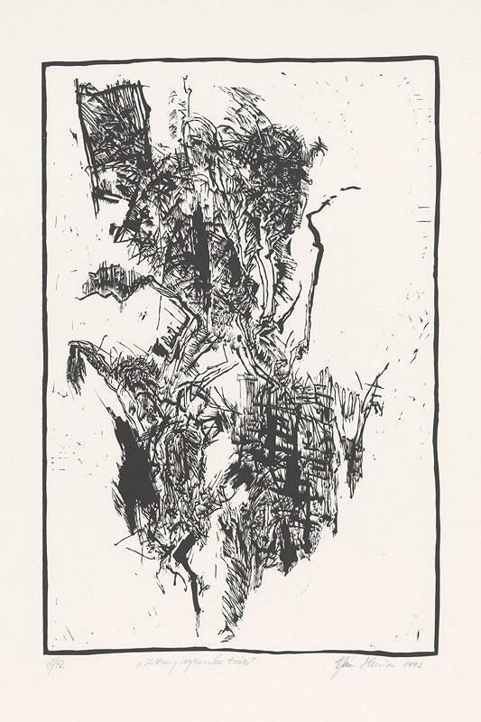 Ján Skrisa – Z tmy vyrazila tvár