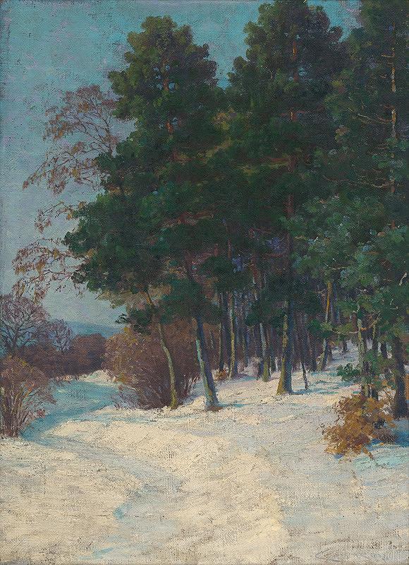 Ľudovít Čordák - Les v zime