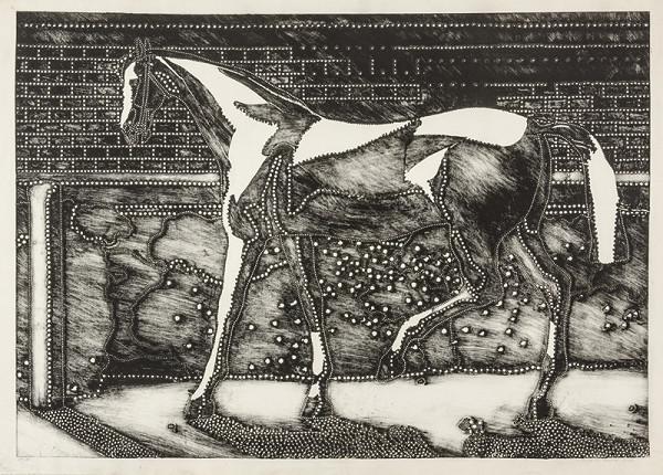 Alena Kučerová – Kůň