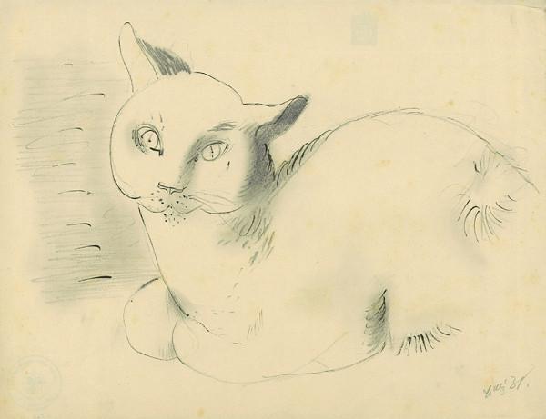 František Tichý - Sedící kočka
