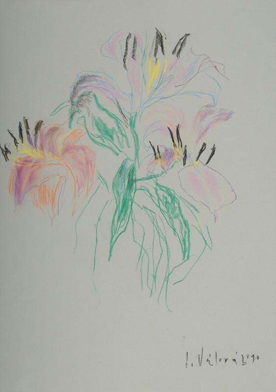 Jitka Válová - Růžová lilie