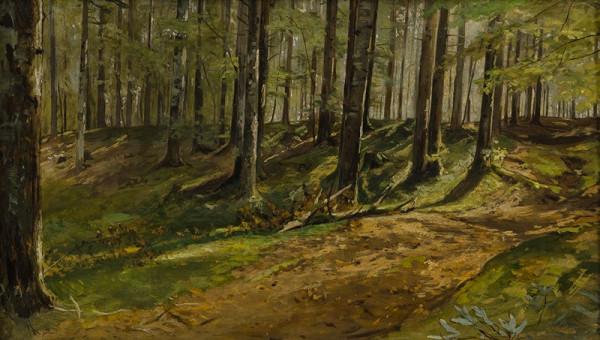 Julius Mařák – Lesní jitro