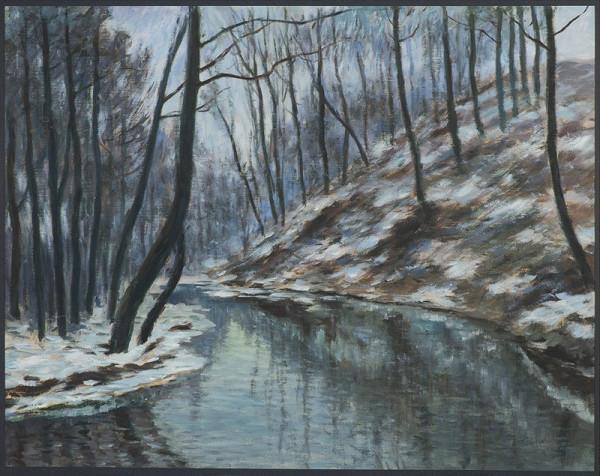 Antonín Hudeček - Les v zimě
