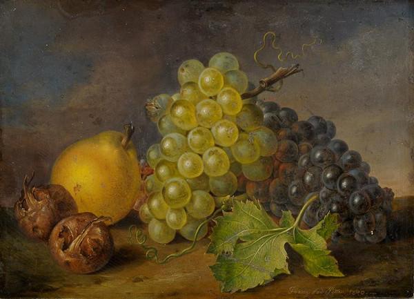 Franz Xaver Petter – Ovocné zátiší s mišpulemi