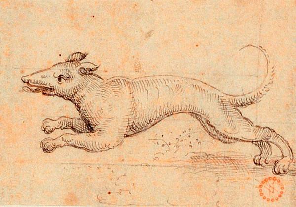 Virgil (Virgilius) Solis (S.V.) – Běžící pes