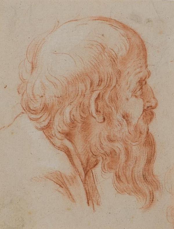 neznámý malíř italský - Hlava vousatého muže