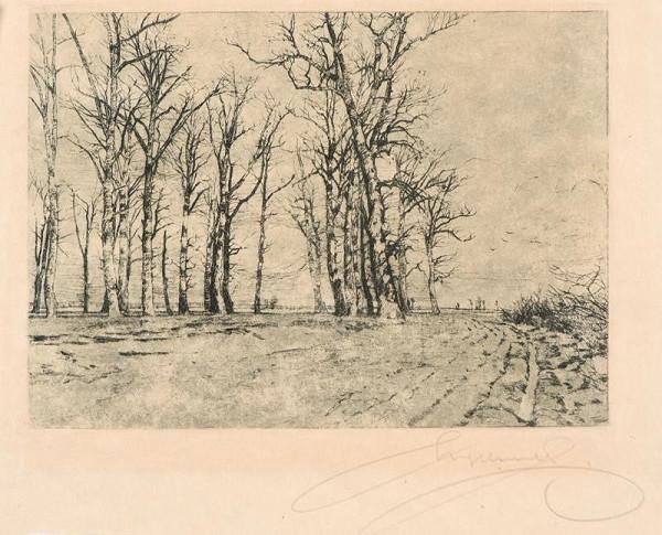 Ferdinand Engelmüller – Stromy v předjaří