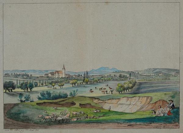 František (Franz) Richter - Celkový pohled na Telnici