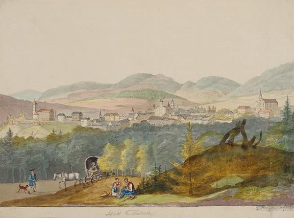 František (Franz) Richter - Celkový pohled na Těšín