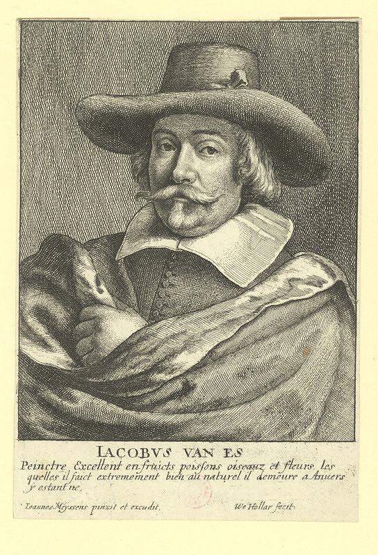 Václav Hollar – Jacobus van Es, podle Joannese Meyssense
