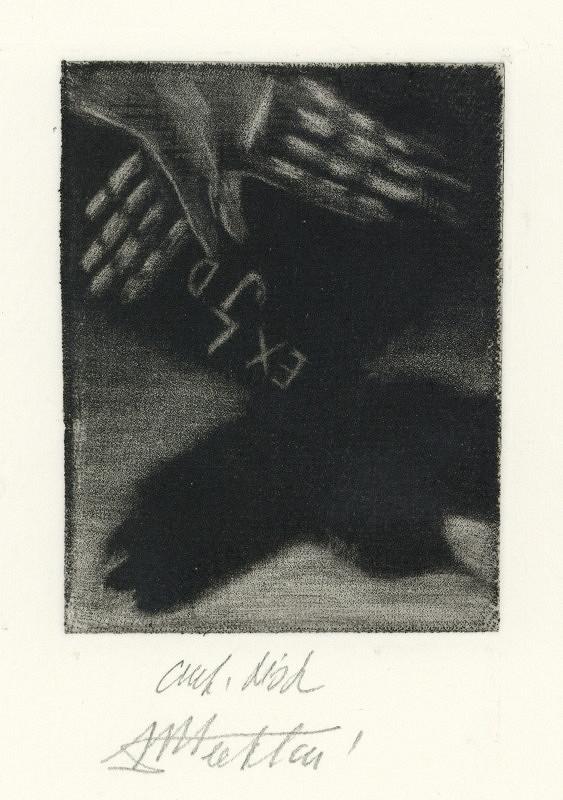 Marie M. Šechtlová – Exl JD (J. Demel)