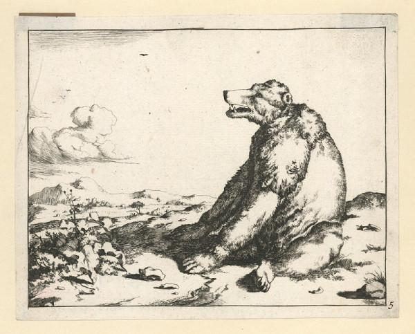 Marcus de Bie – Medvěd (podle M. Gerarda)