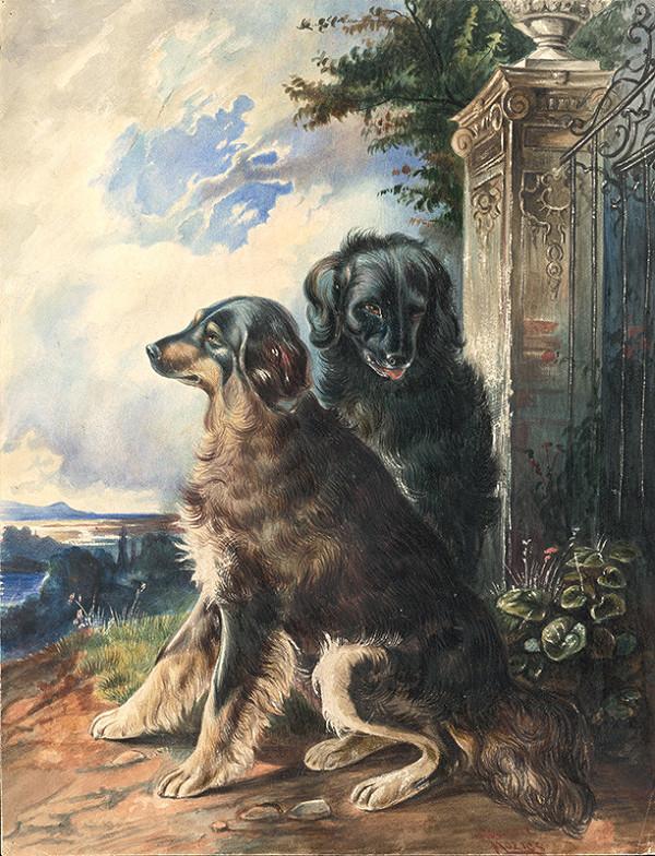 František Kozics - Psi pred bránou