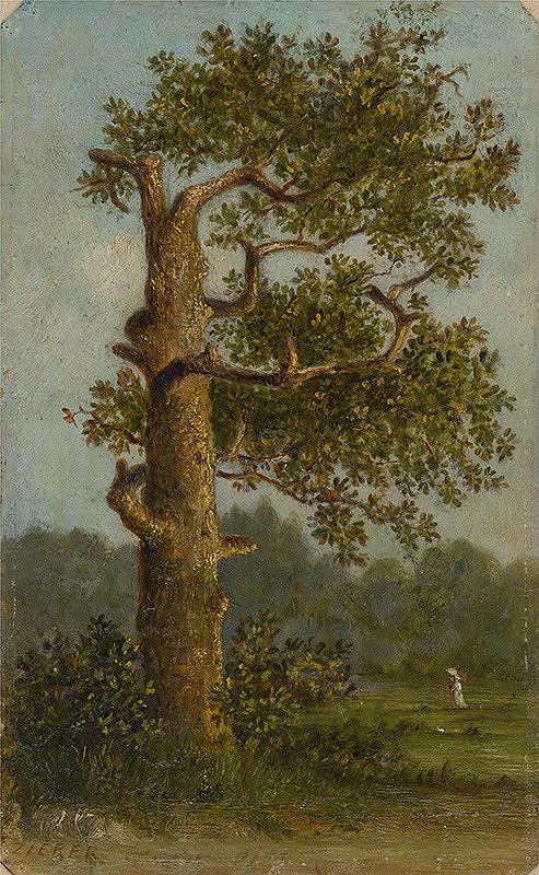 Gejza Zierer – Strom