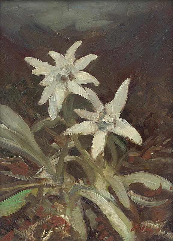 Zolo Palugyay - Horské kvety