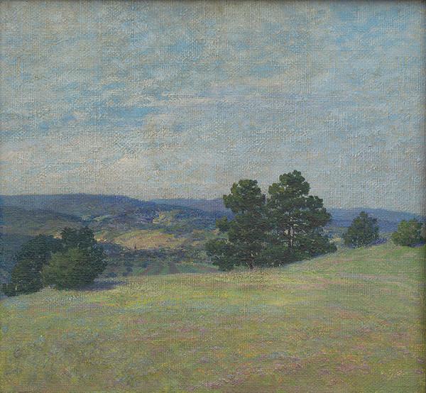Gustav Adolf Schaffer - Pohľad na dolinu