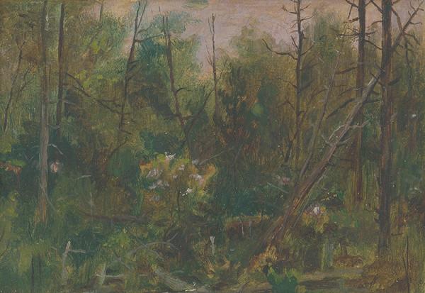 Dezider Czölder – Vnútro lesa