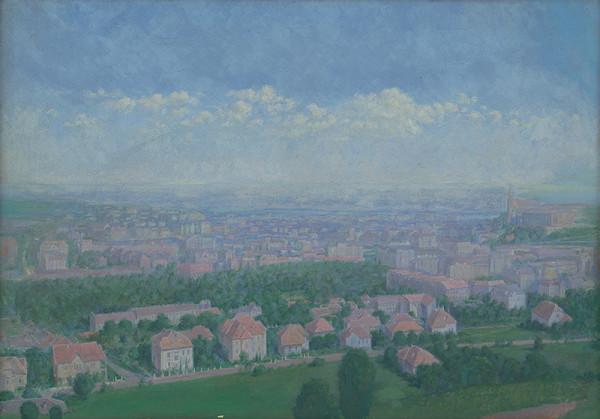 Dezider Czölder - Pohľad na ružové mesto