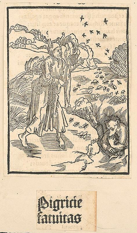 Stredoeurópsky grafik zo 16. storočia – Pigrície fatuitas