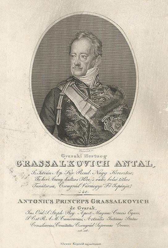 Adám Sándor Ehrenreich - Portrét Antona III. Grassalkovicha
