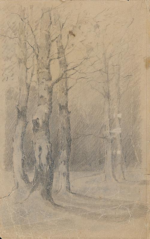 Gustáv Wintersteiner - Štúdia stromov I.
