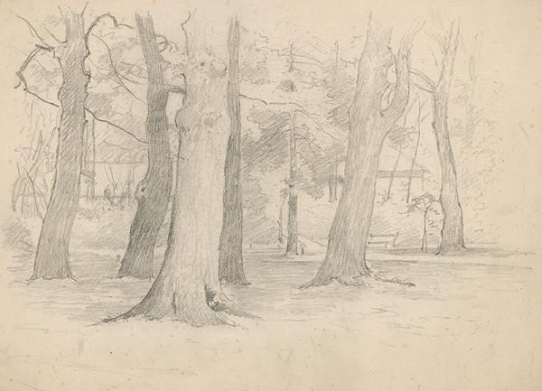 Gustáv Wintersteiner - Štúdia stromov V.