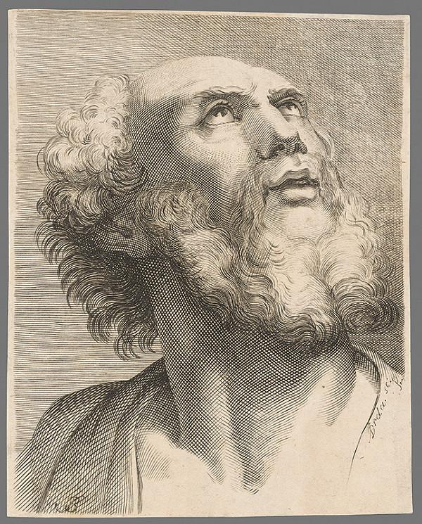 Brda – Portrét muža