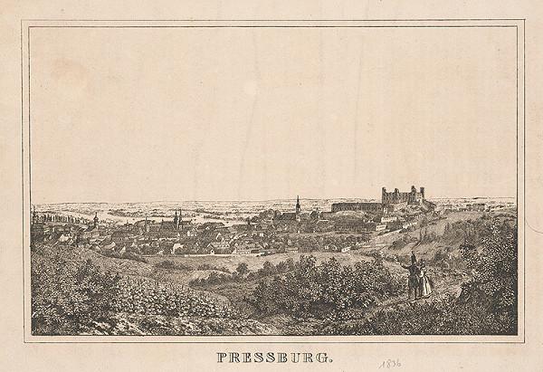 Stredoeurópsky grafik z 19. storočia - Bratislava v 19. stor.-pohľad zo severu