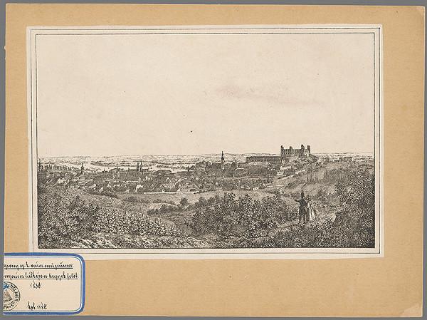 Stredoeurópsky grafik z 19. storočia - Bratislava v 19. stor. pohľad zo severu